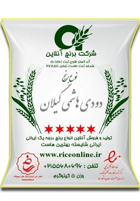 دودی هاشمی جدید 5 e1575120243237 min - خانه