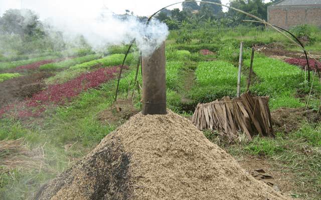 کردن برنج